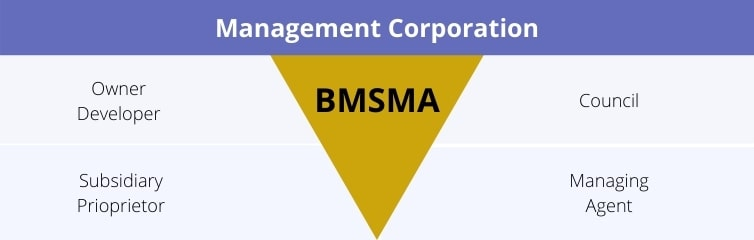 Management Corporation Diagram